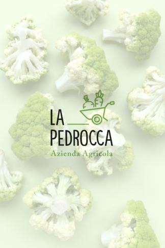 La Pedrocca Azienda Agricola